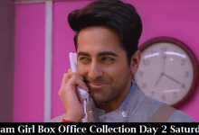 Dream Girl Box Office Collection Day 2 Saturday