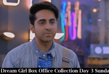 Dream Girl Box Office Collection Day 3 Sunday